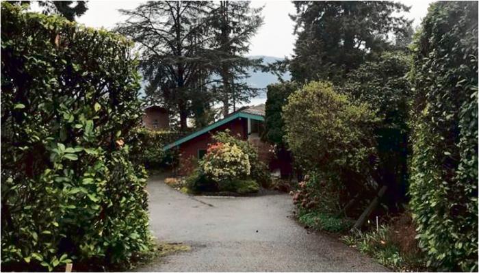 ■西温区政府指出,三名男子非法砍伐公园内的树木,以提升房屋价值。CBC